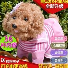 【天天特价】包邮玩具狗音乐狗毛绒玩具狗会走会叫会唱歌的纤绳狗