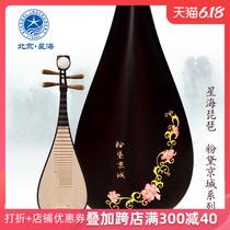 A8914H琵琶乐器专业演奏级酸枝木琵琶奥氏黄檀材质浩初养正星海