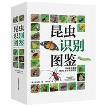 全國優秀昆蟲攝影作品選編推薦發現昆蟲之美