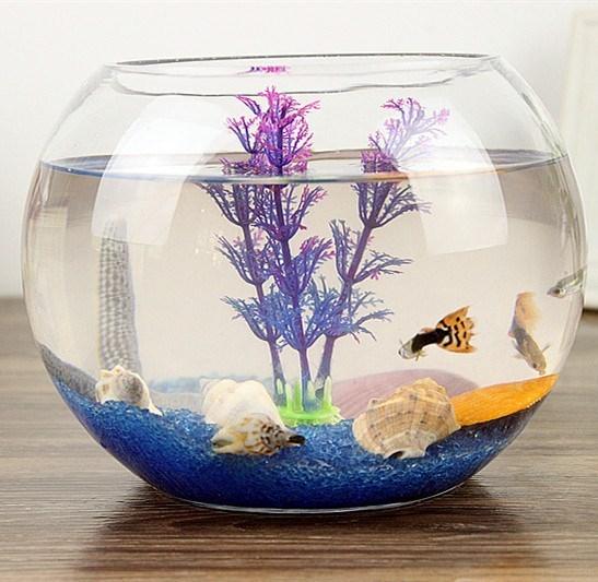 鱼缸玻璃创意圆形水培透明客厅中型办公室桌面小型金鱼迷你小鱼缸18.46元包邮