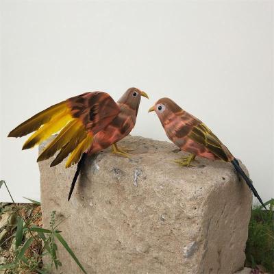 画眉鸟标本 假媒动物模型仿真画眉鸟仿真小鸟摄影道具装饰摆件。