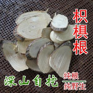 中药材枳椇根野生拐枣根万寿果树根