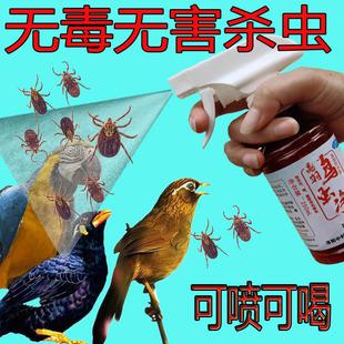 画眉鹦鹉鸟类药用品驱虫体内虫体外寄生虫打虫掉咬毛羽虱子血螨虫