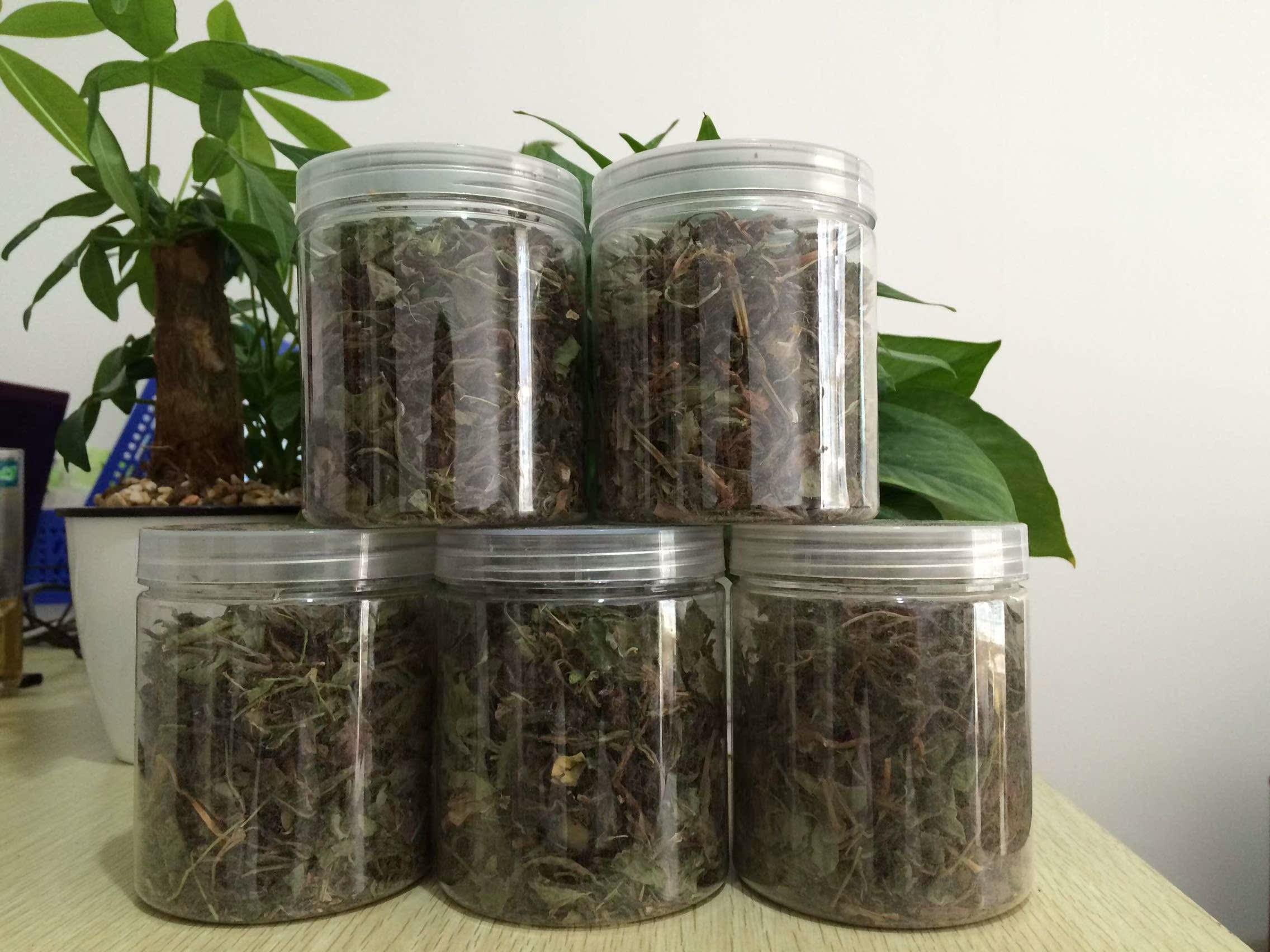 (用49.5元券)祛湿茶去湿气口臭排毒组合