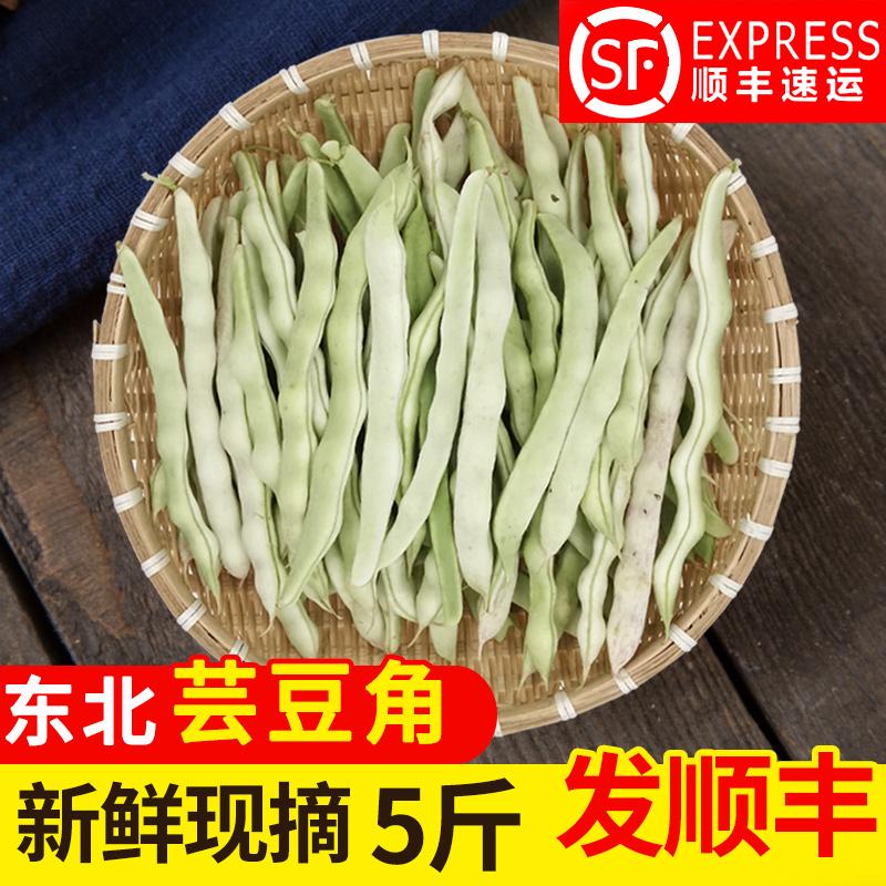 农家芸豆5斤 东北特产油豆角八月忙新鲜蔬菜现摘四季白架豆青菜