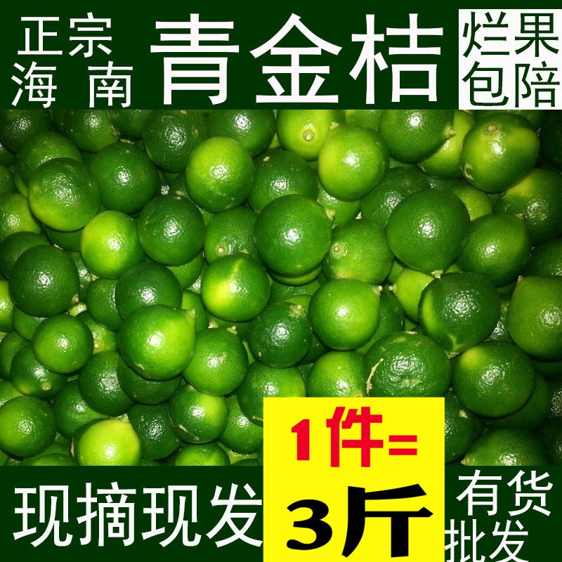 3斤包邮海南青金桔小青新鲜桔小柠檬海南水果橘子青桔子青桔越南券后20.49元
