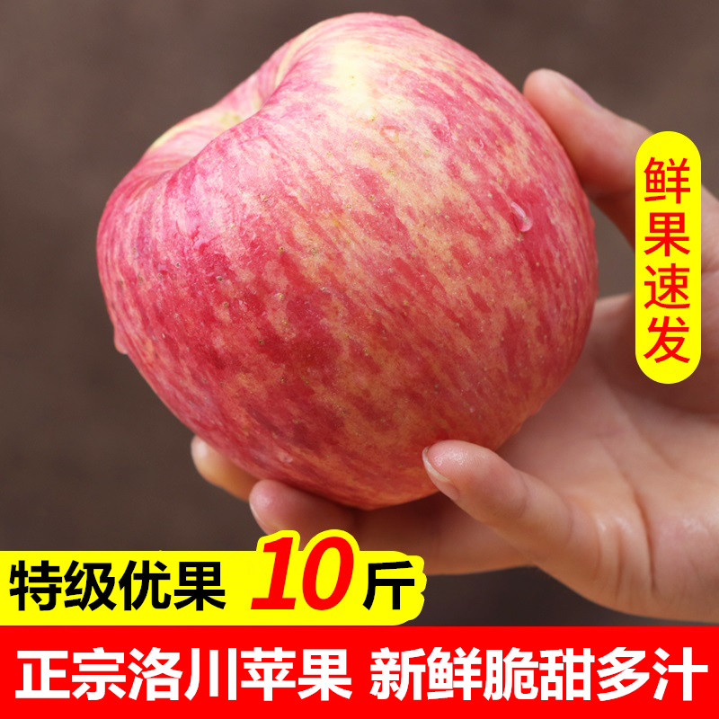 Spot authentic Shaanxi Luochuan apple fruit red Fuji crisp and sweet 10 jin fresh a whole box batch of large fruit rock candy hearts