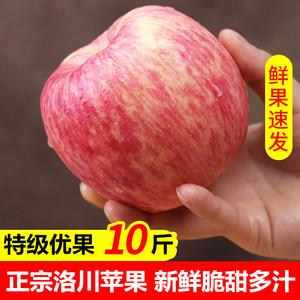 现货正宗陕西洛川苹果水果红富士脆甜10斤新鲜一整箱批大果冰糖心