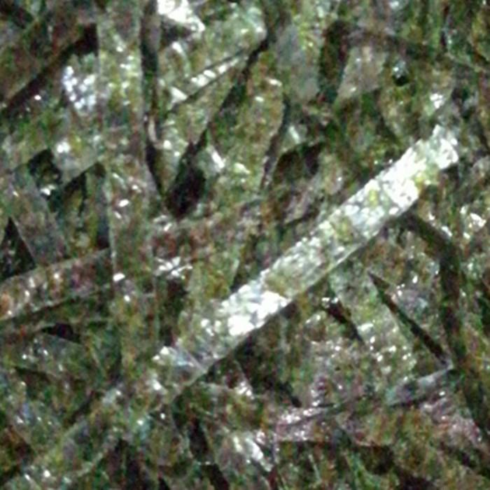 海苔条拌饭碎海苔章鱼小丸子散装即食切丝海苔丝500克烤紫菜250g