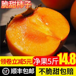 甜柿子新鲜5斤火晶当季整箱脆柿子