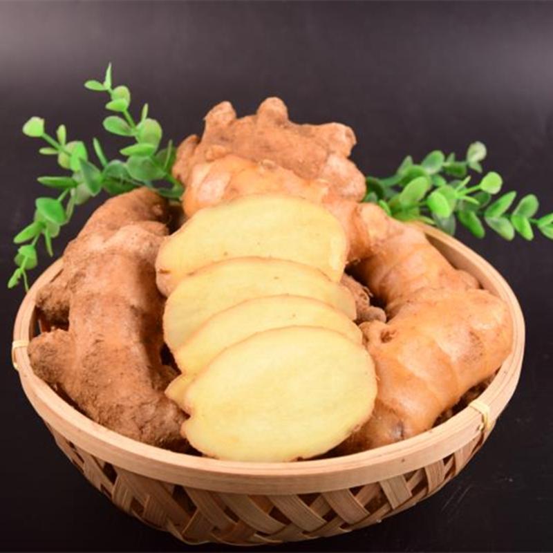 生姜塊老姜塊山東大黃姜塊窖藏生黃姜塊辛辣老姜月子姜母5斤包郵