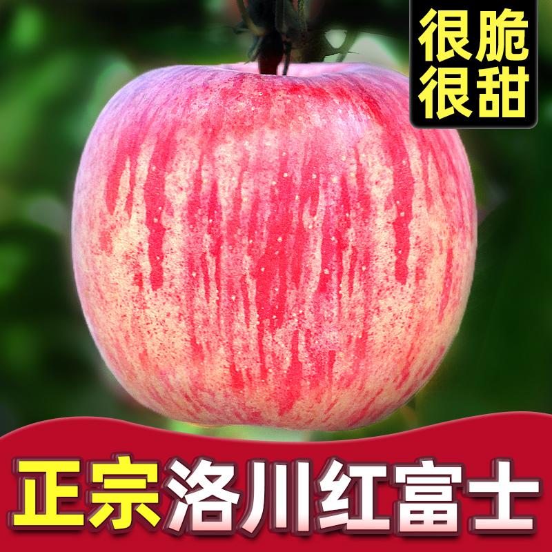 正宗陕西洛川红富士苹果水果新鲜现摘一级脆甜应当季整箱10斤包邮