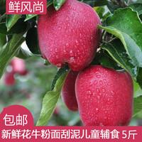 花牛苹果甘肃天水新鲜水果红蛇果5斤包邮粉面刮泥儿味道香甜多汁