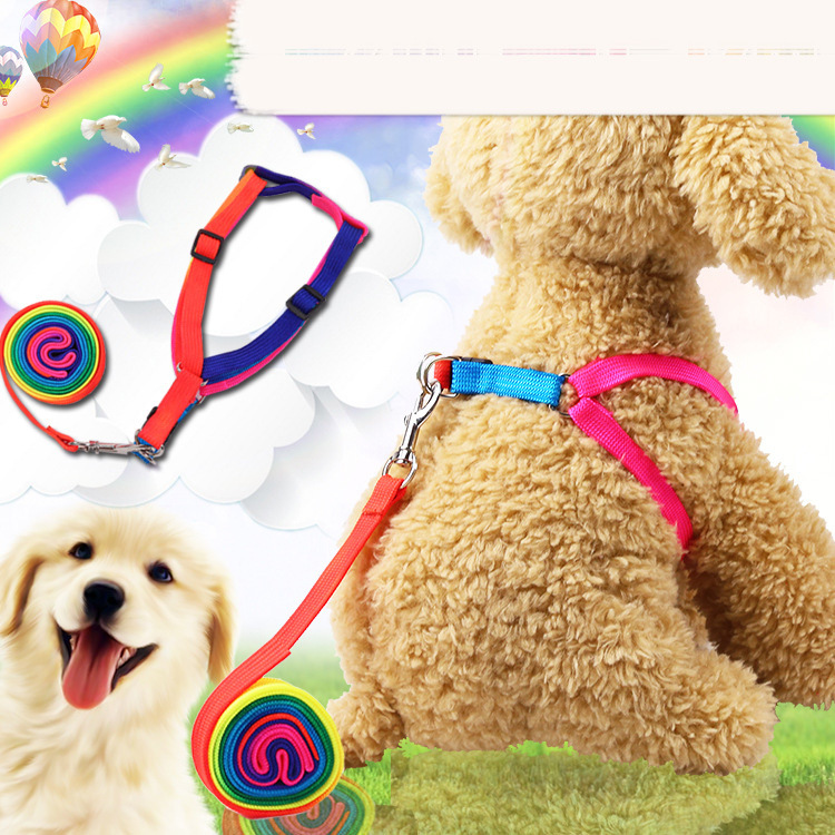 1.5cm and 1.0cm colorful rope chest strap dog traction rope chain cute rainbow pet supplies