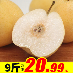 砀山梨新鲜陕西酥梨皇冠梨当季水果9斤梨子整箱大黄梨黄酥梨雪梨