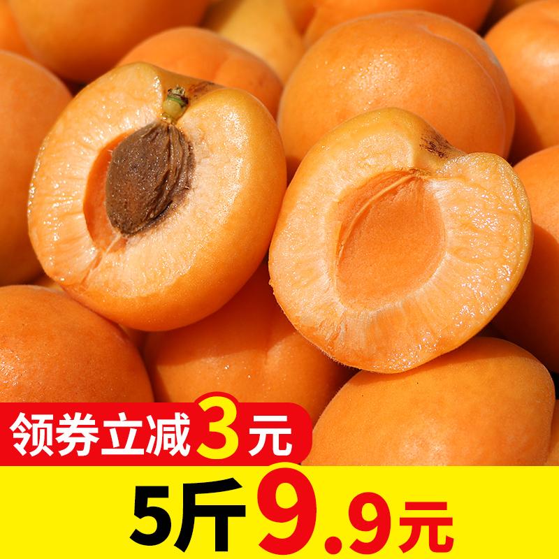 杏子新鲜大黄杏应季水果直批发整箱5斤吃货当应季酸甜孕妇助农家