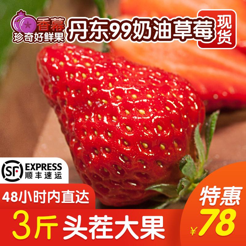 丹东99草莓3斤新鲜水果现摘红颜牛奶奶油九九大草莓当季1顺丰包邮