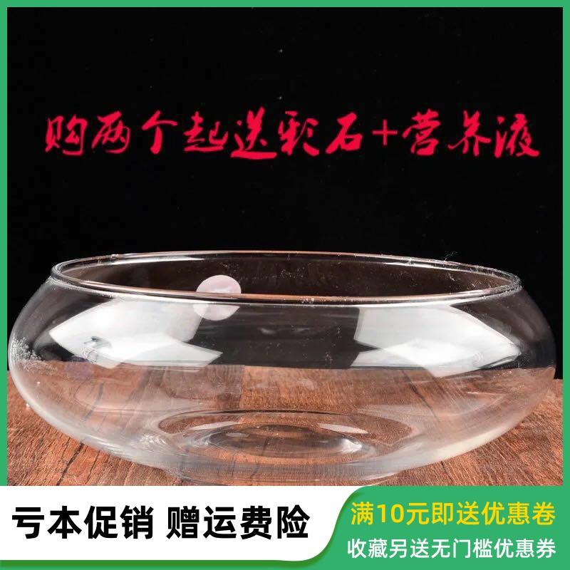 透明生态创意圆形鱼缸玻璃乌龟缸造景小型金鱼缸迷你花瓶水培花盆,可领取1元天猫优惠券