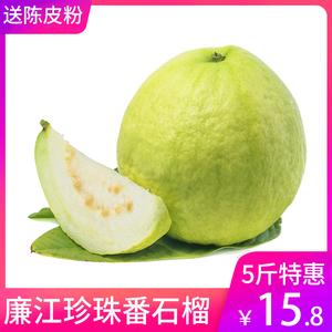廉江珍珠番石榴5斤 水果当季新鲜现摘当季大芭乐