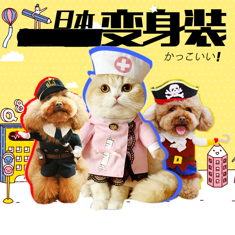 Cat changing into funny pet upright changing into cat clothes dog funny cat English short cute summer thin