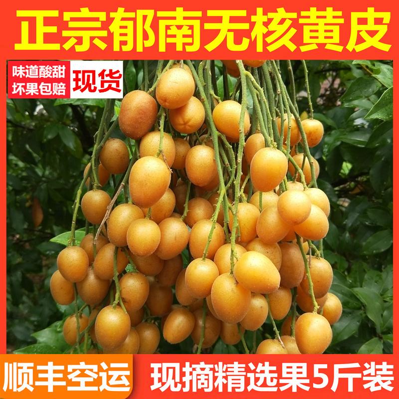 黄皮果水果新鲜5斤 孕妇水果新鲜应季时令水果现摘鸡心黄皮果