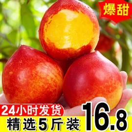 黄心油桃现货5斤新鲜水果应当季孕妇现摘脆甜大桃子整箱非水蜜桃图片