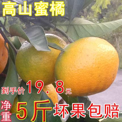 新鲜无籽青绿皮大孕妇酸甜蜜橘子
