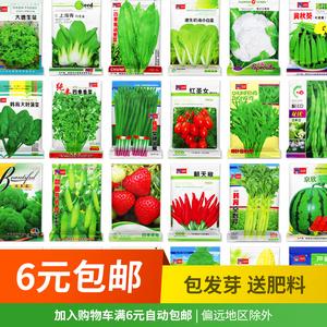 四季蔬菜菜种种子北南方农家阳台盆栽种菜菜籽大全香菜生菜瓜果孑
