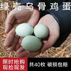40枚正宗散养绿壳乌鸡蛋农家纯粮新鲜乌骨鸡蛋草鸡蛋初生柴土鸡蛋