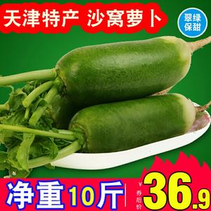 玉正宗沙窝天津新鲜水果甜脆非萝卜
