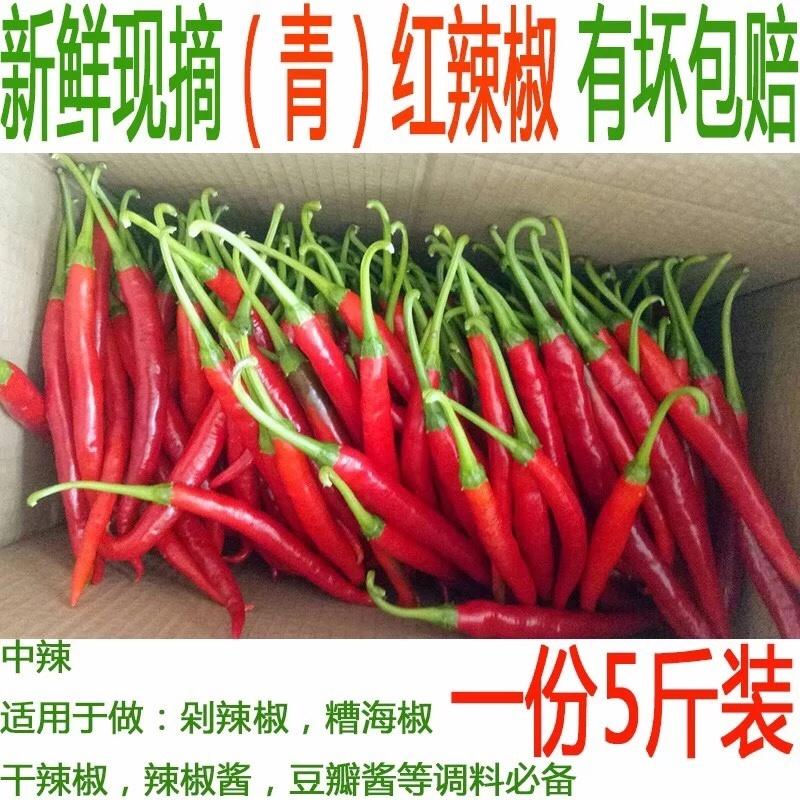 现货贵州红辣椒新鲜二荆条应季蔬菜线椒用做糟辣椒泡椒豆瓣的辣椒