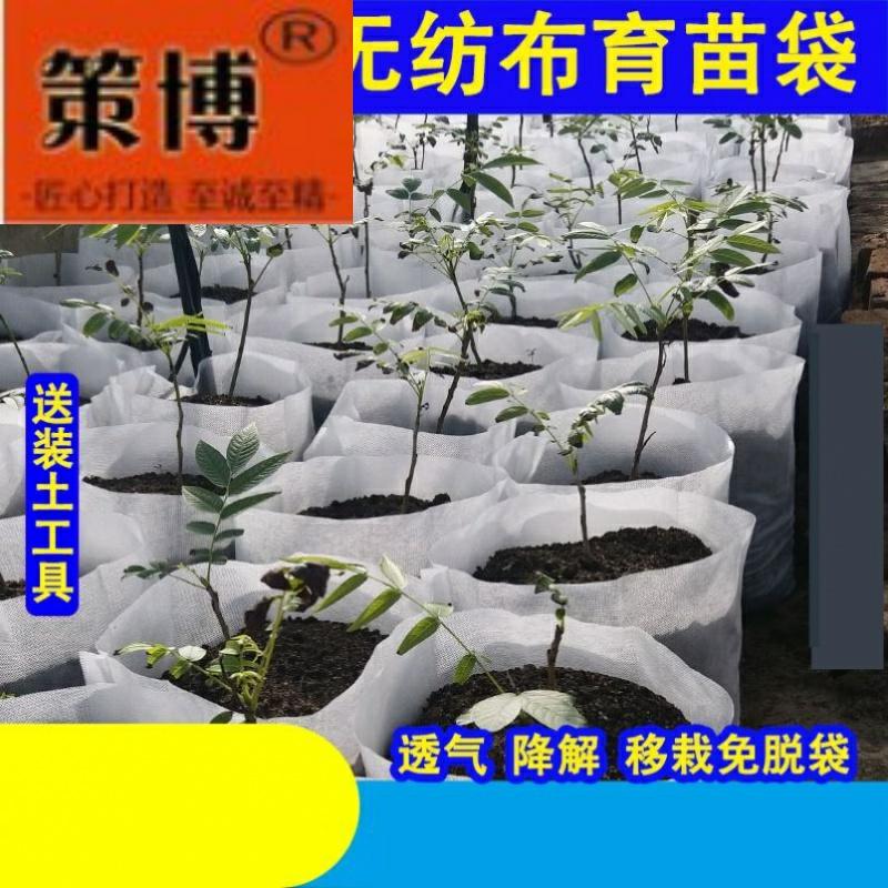 ~工具袋育苗钵牢固宽度加厚果树移栽苗木植物一次性大号植树营养 Изображение 1