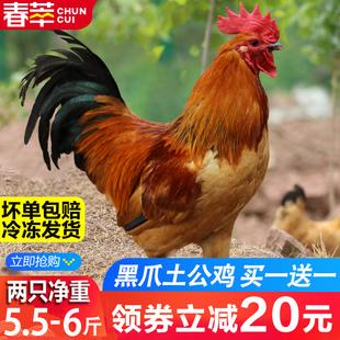 2只大公鸡6斤农家散养土公鸡草鸡笨鸡老母鸡土鸡现杀新鲜月子鸡肉