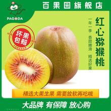 【百果园旗舰店】四川蒲江红心猕猴桃大12粒
