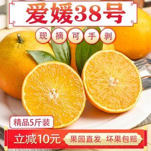 爱媛38号果冻橙子精品大果5斤四川眉山现摘新鲜当季 水果手剥