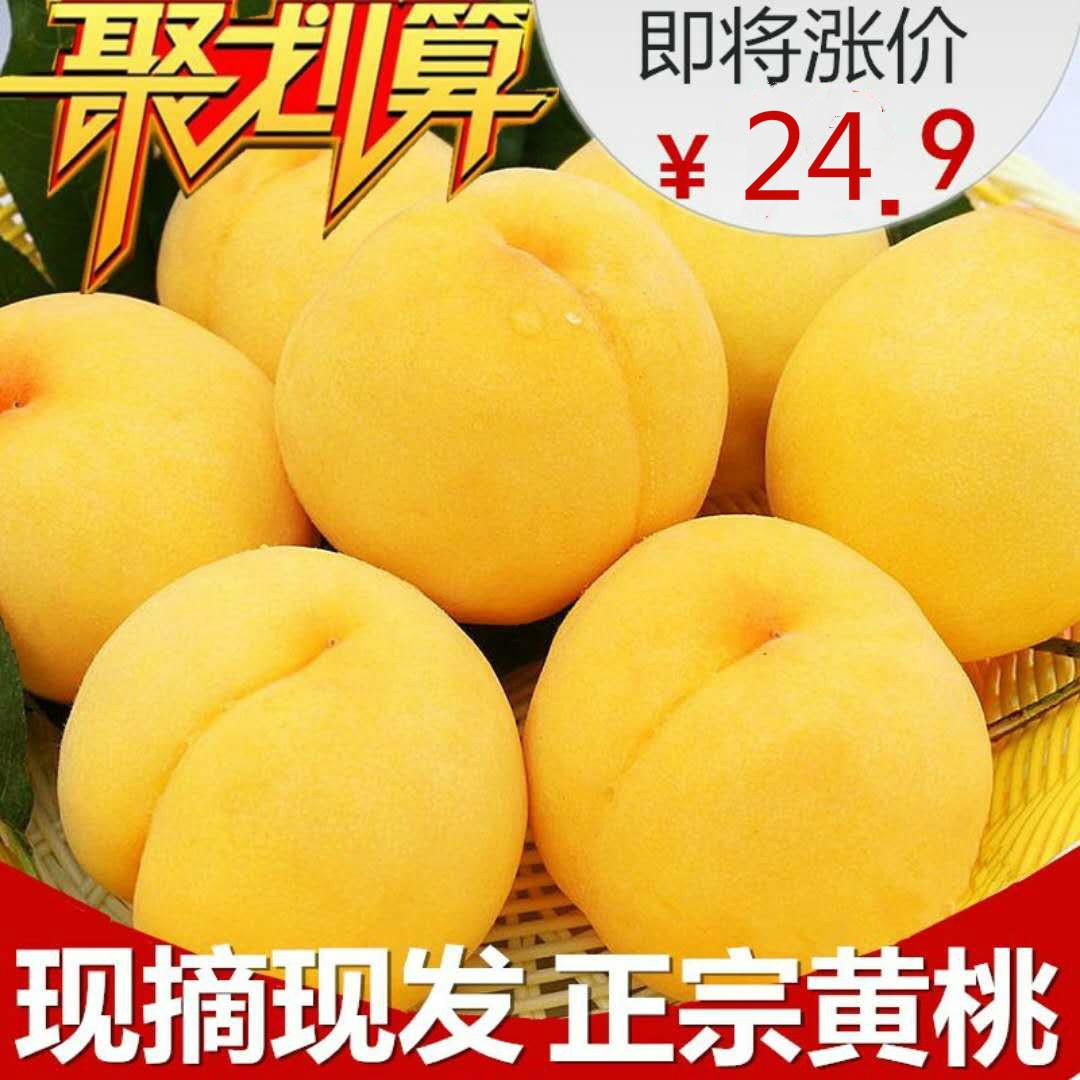 现货非武台甜黄桃新鲜水果老黄金桃黄桃特产纯甜脆桃现摘5斤包邮