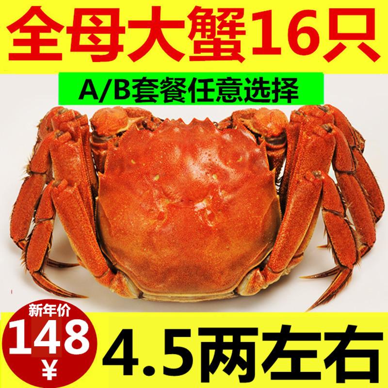 抢16只大闸蟹鲜活现货新鲜湖蟹