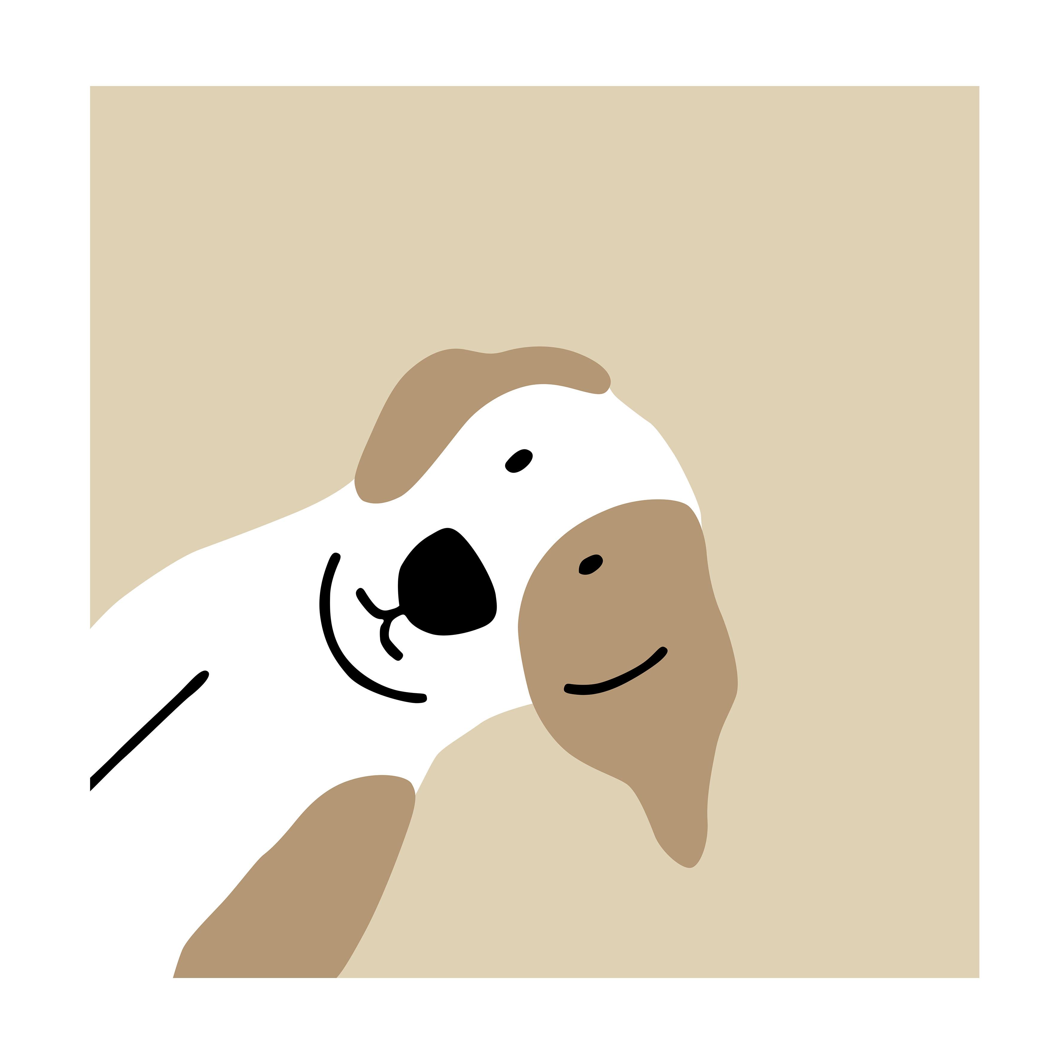 dog戴圣诞可爱小狗喜欢的生活帽子