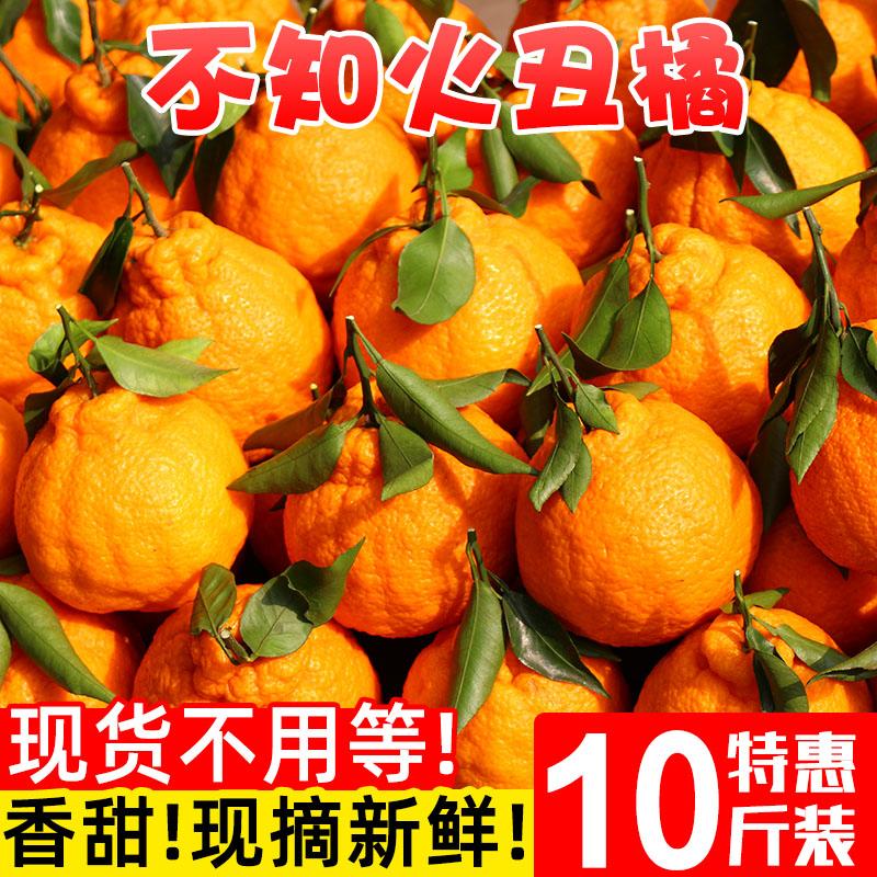 不知火丑橘10斤当季新鲜水果整箱包邮丑八怪橘子粑粑蜜桔子柑橘