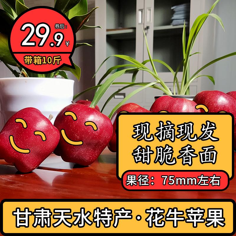 甘肃天水花牛苹果10斤带箱水果新鲜当季整箱应季现季蛇果面甜孕妇的宝贝主图