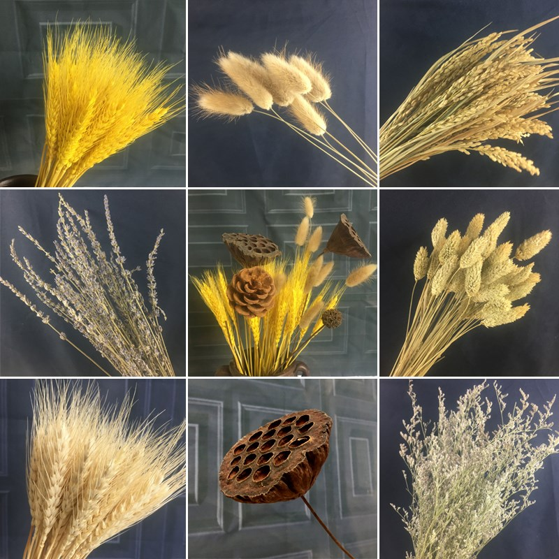 天然麦穗干花花束开业大麦棉花ins风家居客厅卧室办公室