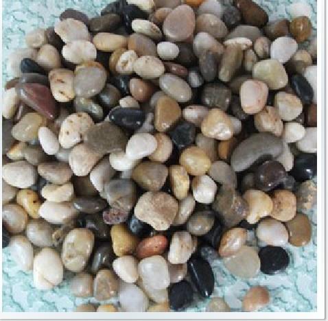 Gardening supplies pebble decoration garden stone natural stone hydroponic stone decoration 500g