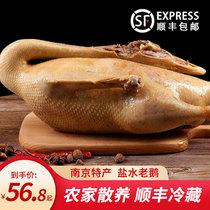 扬州盐水鹅整只南京特产咸水老鹅风干鹅卤味熟食真空即食顺丰冷藏