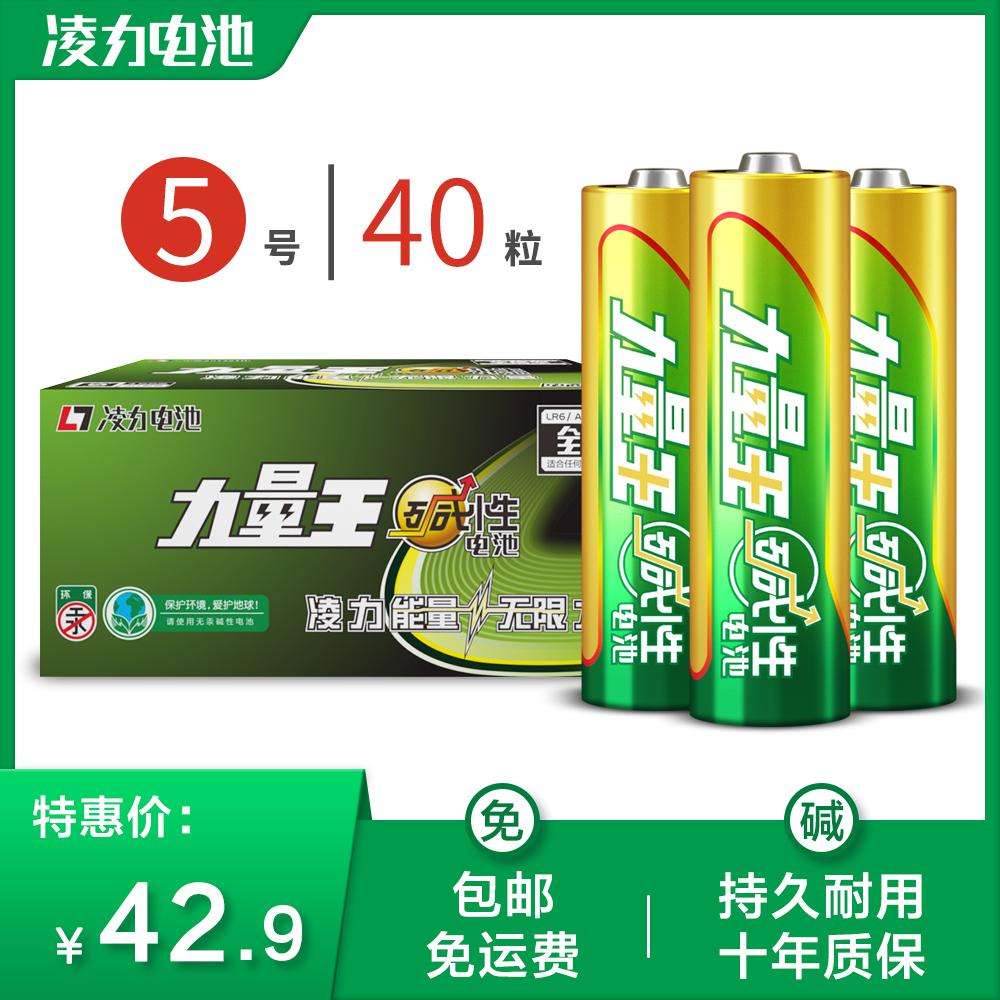凌力力量王5号碱性电池五号智能门锁电池儿童玩具鼠标干电池40粒,可领取5元天猫优惠券