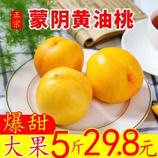 顺丰包邮山东蒙阴黄金油桃大果5斤孕妇应季新鲜水果蜜桃子爆脆甜