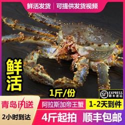 鲜之源帝王蟹鲜活大螃蟹海鲜水产冰鲜皇帝蟹蜘蛛长腿蟹258/斤包邮