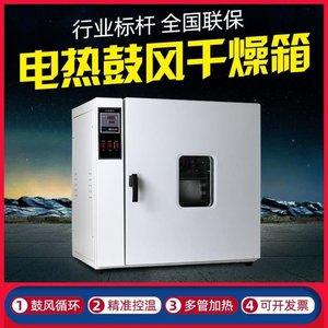 电 热恒温鼓风干燥箱真空小 型高温烤箱实验室用烘干设备工业烘箱