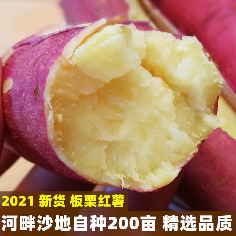 陕西板栗红薯新鲜农家自种蜜薯糖心地瓜红薯10斤包邮番薯小香薯