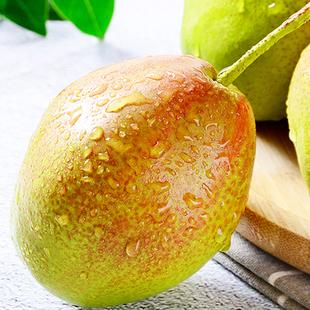 新鲜早酥梨 陕西大荔水果红香酥梨当季香脆梨带箱5斤现摘现发