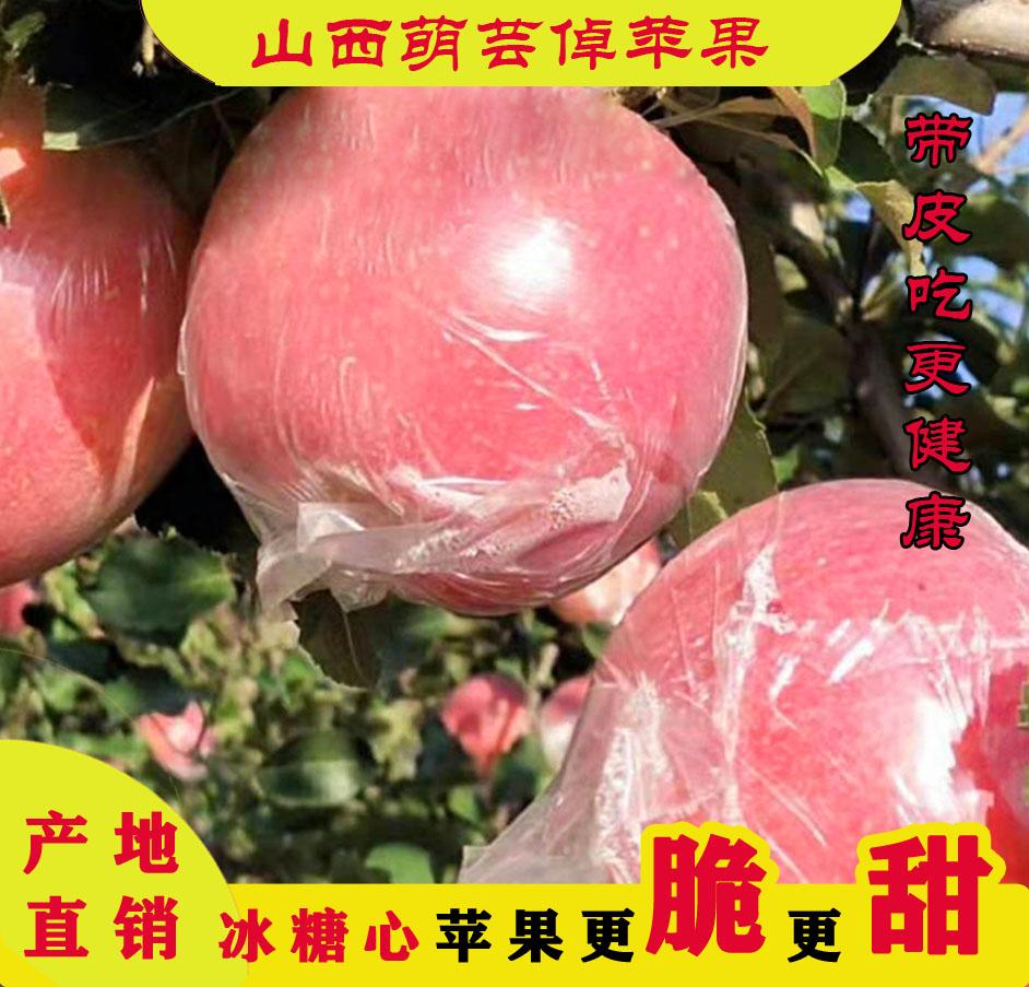 Shanxi fresh fruit 10 jin rock sugar heart red Fuji crisp sweet non Yantai cheap affordable ugly apple